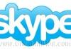Skype 3.1.0