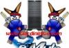Server Emule Sicuri, I migliori aggiornati del [anno]