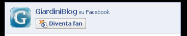diventa fan facebook