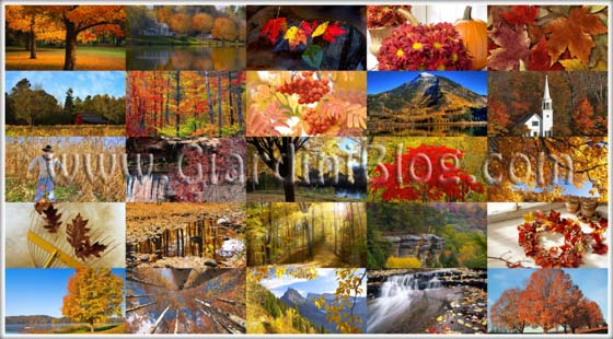 150 sfondi d 39 autunno per il desktop download for Desktop sfondi autunno