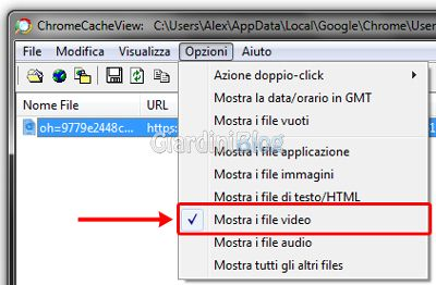 mostra-file-video
