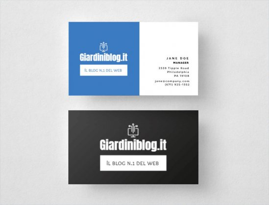 creare logo biglietto visita