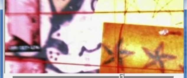 dividere file avi frame