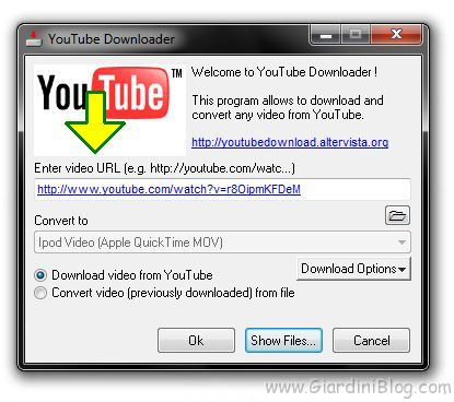 youtube downloader