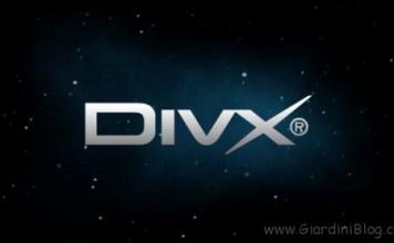 Guida - Significato delle sigle utilizzate nei DivX