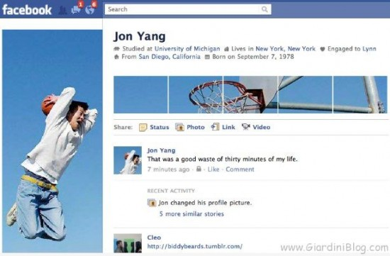facebook profile example 2