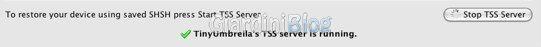 stop tss server