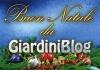 Buon Natale 2009! Auguri da GiardiniBlog!