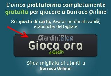 Gioca ora a Burraco Online