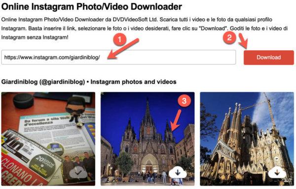 dvdvideosoft download video instagram