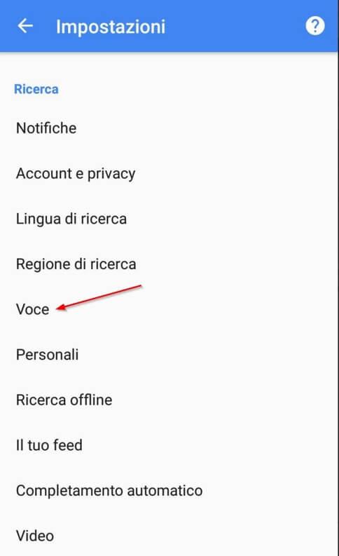 google now voce