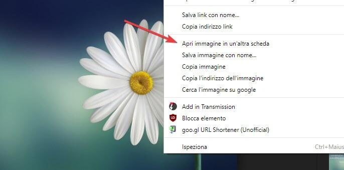 Apri immagine Google Chrome