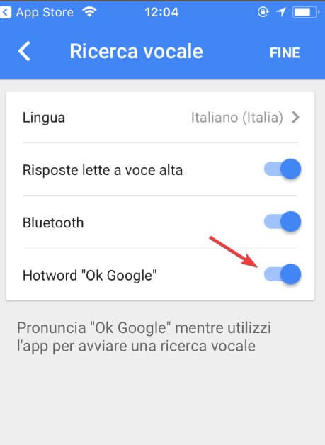 Ok Google su iOS apple iphone ipad