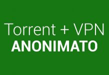 VPN per file torrent