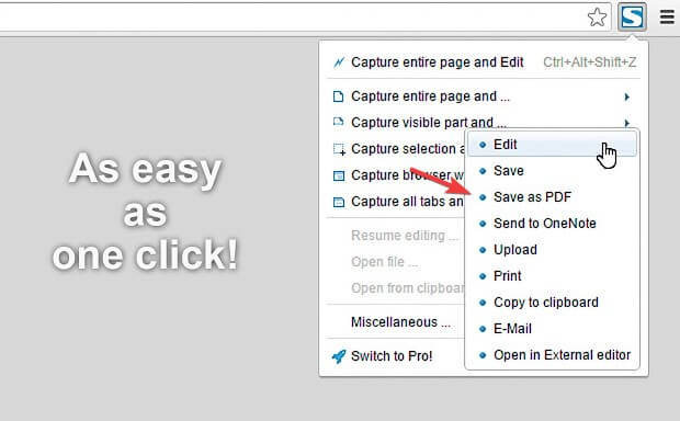 FireShot per salvare pagine web