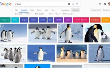 Google Immagini: i trucchi per sfruttarne le funzionalità