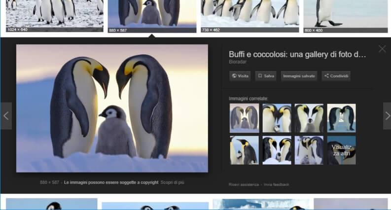 google ricerca immagini simili