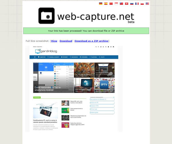 screenshot pagine web