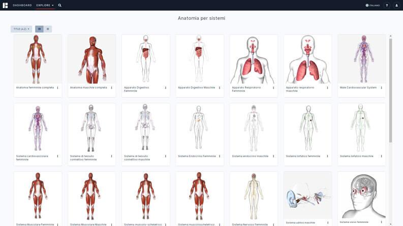 anatomia umana 3d
