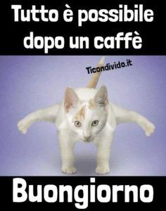 tutto possibile dopo caffè