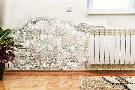 danni muffa intonaco pareti