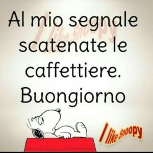 scatenate le caffettiere