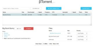Scaricare file torrent senza programmi
