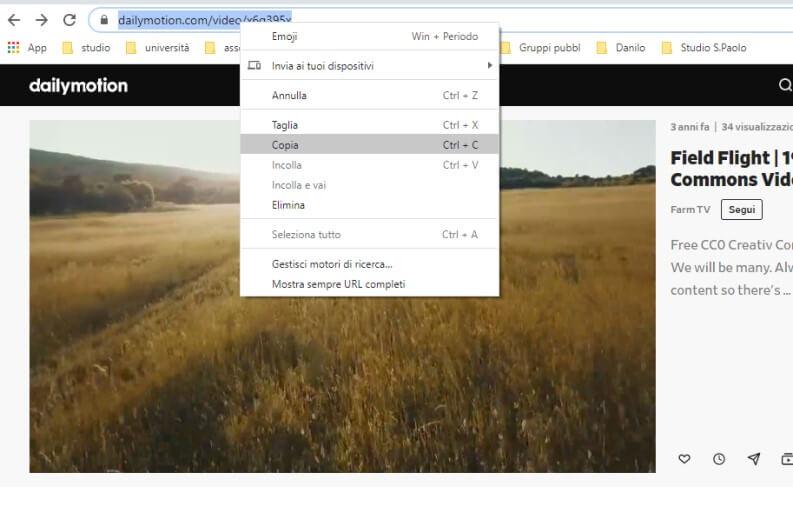 copiare link da dailymotion per scaricare video