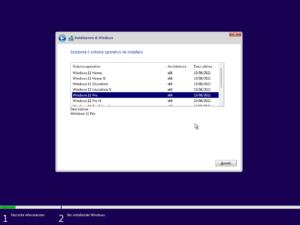 Seleziona versione Windows 11