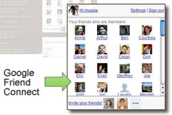Google introduce Friend Connect : socializzare sul Blog
